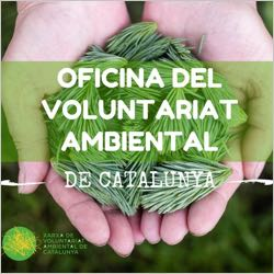 Banner oficina voluntariat ambiental